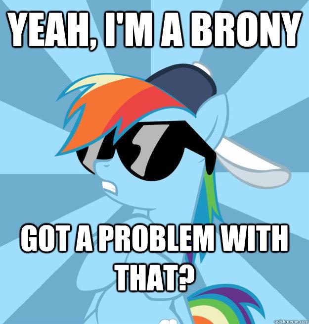 Rainbow+Dash.+I'm+a+brony
