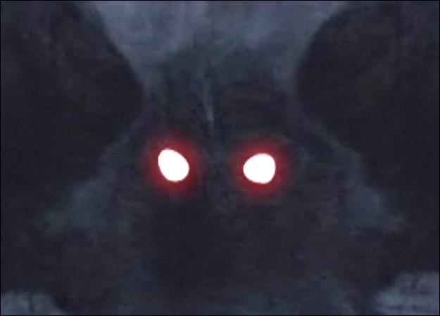 mothman-2